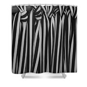5 Ties In Black And White Shower Curtain