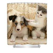 Kitten And Pup Shower Curtain by Jane Burton