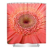 5258 Shower Curtain