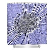 5540c7 Shower Curtain