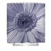 5540c8 Shower Curtain