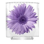 5552c6 Shower Curtain