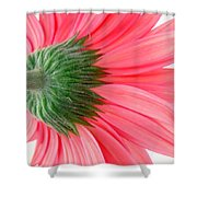 557412c1 Shower Curtain