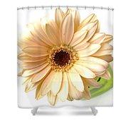5732c1 Shower Curtain