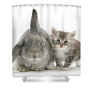 Kitten And Rabbit Shower Curtain