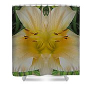 Angelic Lily Shower Curtain