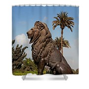 Cairo City Streets Shower Curtain