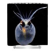 Cockatoo Squid Shower Curtain