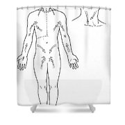Direction Of Lymph Flow Shower Curtain
