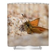 European Skipper Shower Curtain