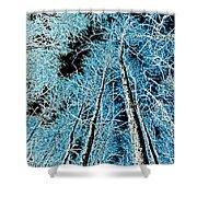 Forest Art Shower Curtain