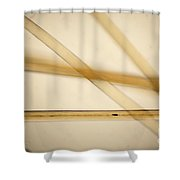 Human Hair Shower Curtain