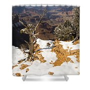 Winter Time On The South Rim Shower Curtain