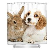 Cocker Spaniel And Rabbit Shower Curtain