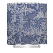 Frost On A Window Shower Curtain