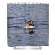 Green Wing Teal Shower Curtain