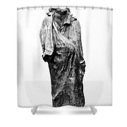 Honore De Balzac (1799-1850) Shower Curtain