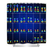 Male Karyotype Shower Curtain