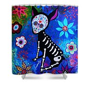 Chihuahua Day Of The Dead Shower Curtain