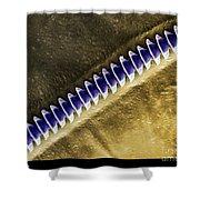 Cricket Sound Comb, Sem Shower Curtain