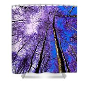 Epping Forest Trees Shower Curtain
