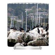 Monterey Harbour Shower Curtain