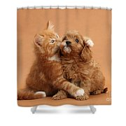 Puppy And Kitten Shower Curtain