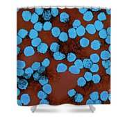 Yellow Fever Virus, Tem Shower Curtain by Science Source