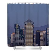 8008 Shower Curtain
