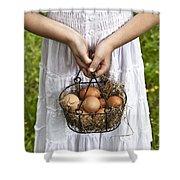 Eggs Shower Curtain
