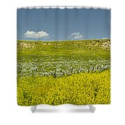 9 Mile Road Shower Curtain