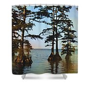 Reelfoot Lake Shower Curtain