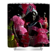 West Indian Day Parade Brooklyn Ny Shower Curtain