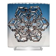 Snowflake Shower Curtain