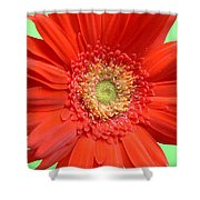 93573a1 Shower Curtain