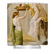A Basket Of Roses - Grecian Girls Shower Curtain