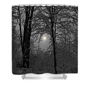 A Beautiful Day Shower Curtain