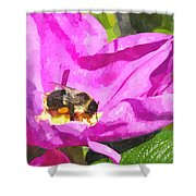 A Bee In A Rose Brpwc Shower Curtain