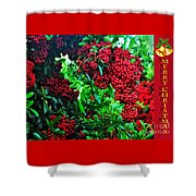 A Berry Merry Christmas Shower Curtain