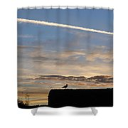 A Bird Outlined Against The Setting Sky At Dover Castle Shower Curtain