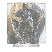A Bison Covered By Ice And Fog Shower Curtain