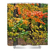 A Blustery Autumn Day Shower Curtain