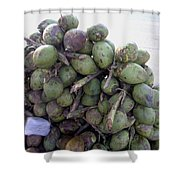 A Bunch Of Tender Coconuts Being Sold By A Vendor On The Street Shower Curtain