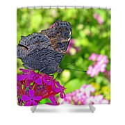 A Butterfly On The Pink Flower Shower Curtain
