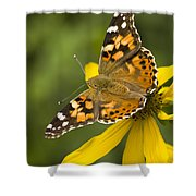 A Butterfly Sits Atop A Yellow Shower Curtain