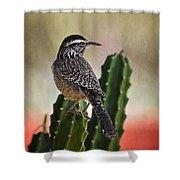 A Cactus Wren  Shower Curtain