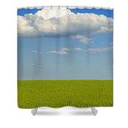 A Canola Field Shower Curtain