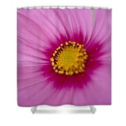 A Close-up Of A Pink Wildflower Shower Curtain