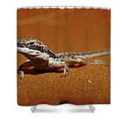 A Close View Of A Military Sand Dragon Shower Curtain
