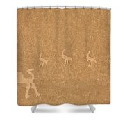 A Close View Of Ancient Petroglyphs Shower Curtain
